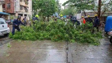 Photo of Nisarga Cyclone : महाराष्ट्र में निसर्ग चक्रवाती ने मचाई तबाही, खंभा गिरने से अलीबाग में एक की मौत, उद्धव ठाकरे ने लिया जायजा